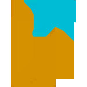 Bulk SMS Solutions | SiteVela Web Solutions & Services